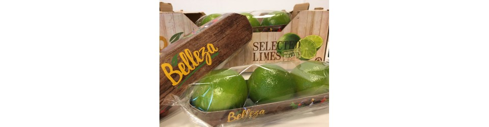 Belleza limes tray 10x3