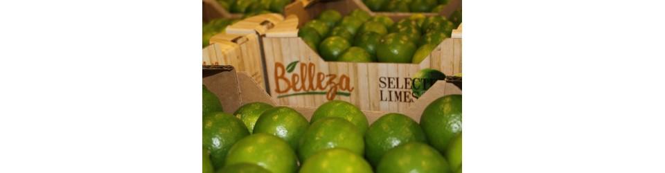 Belleza Limes 4.5KG