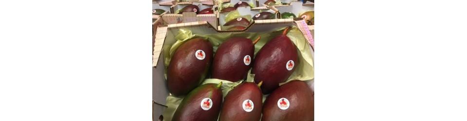 Belleza Palmer mangoes 4,0kg box